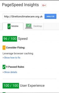Screenshot - Google PageSpeed Insights